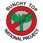 bunchy-top-project