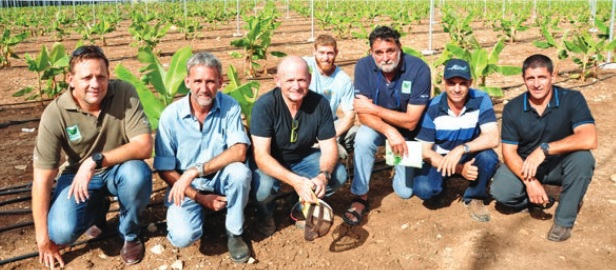 On tour: Lindsay Rural's Shane O'Flanagan (far left) with Tully's Stephen Lowe, Bananot Hahof's Hanan Ben Shalom and Uri Shpatz, Haifa Australia's Peter Anderson, Lakelands grower Martin Garate and Shayne Cini of Innisfail.