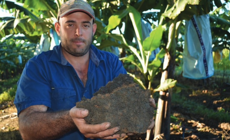 Michael Russo is focussing on soil health to unlock benefits for banana production.