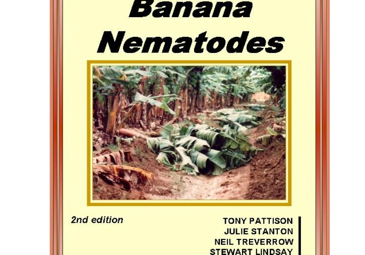 Managing-banana-nematodes_edited-version