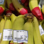 The Sciacca's distinctive red-tipped bananas ready for consumers in Hong Kong.