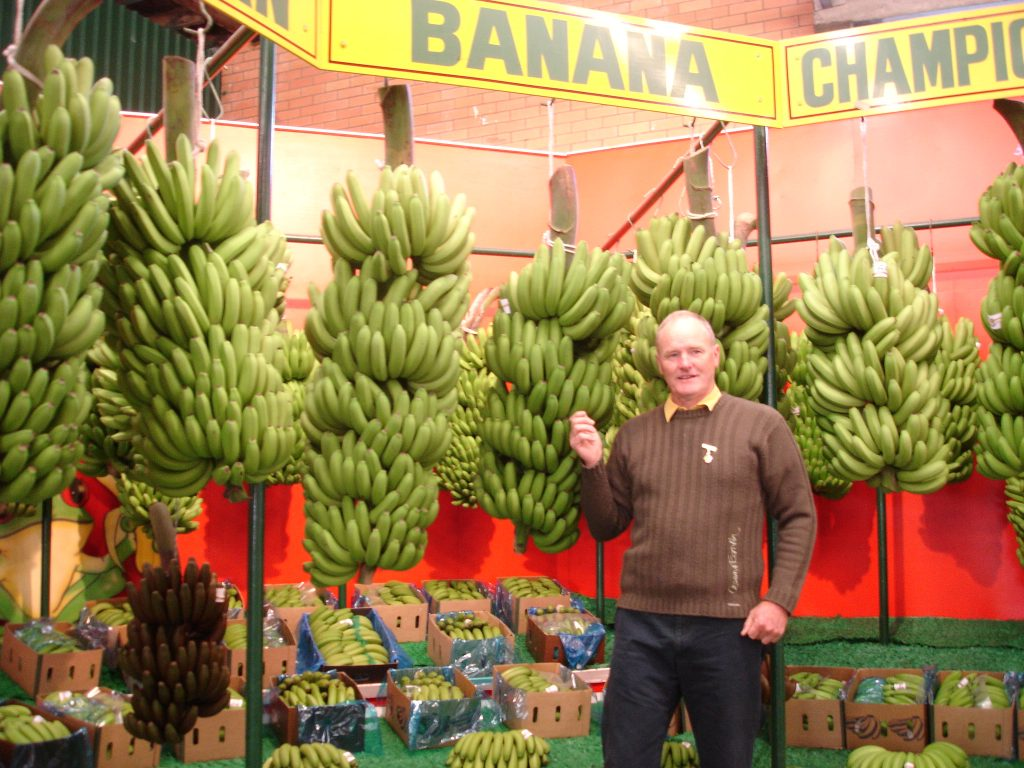 David judging bananas at the EKKA in 2008.