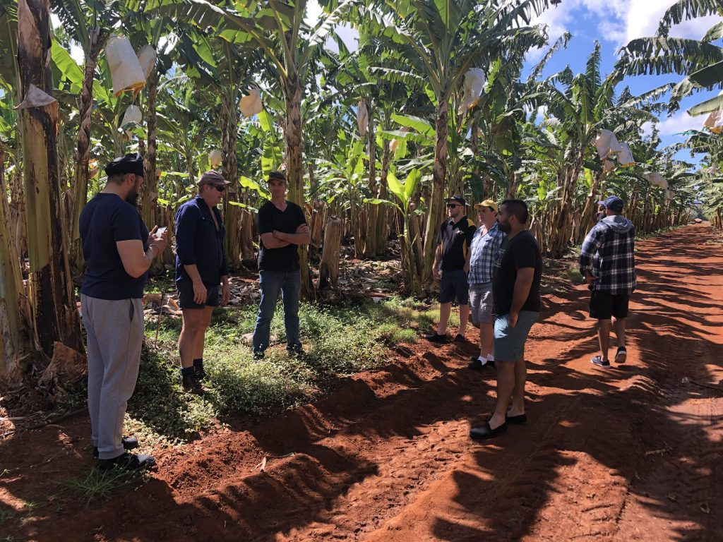 Growers on one of three farms visited during the NQ tour.